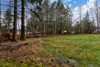 Photo 9: 6575 Poulton Rd in : CV Merville Black Creek House for sale (Comox Valley)  : MLS®# 862861