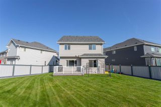 Photo 26: 7711 18 Avenue in Edmonton: Zone 53 House for sale : MLS®# E4170900