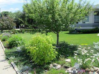 Photo 17: 734 Sun Valley Drive in Estevan: Bay Meadows Residential for sale : MLS®# SK808760