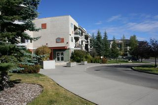 Photo 41: 234 69 SPRINGBOROUGH Court SW in Calgary: Springbank Hill Apartment for sale : MLS®# A1029583
