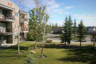 Photo 34: 234 69 SPRINGBOROUGH Court SW in Calgary: Springbank Hill Apartment for sale : MLS®# A1029583