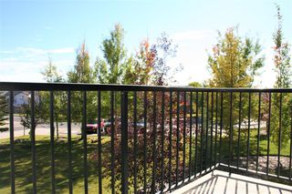 Photo 39: 234 69 SPRINGBOROUGH Court SW in Calgary: Springbank Hill Apartment for sale : MLS®# A1029583