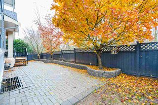 Photo 37: 8302 211 Street in Langley: Willoughby Heights House for sale : MLS®# R2520232