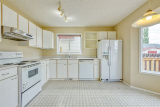Photo 9: 11724 8 Avenue in Edmonton: Zone 16 House for sale : MLS®# E4172756