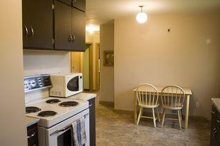 Photo 22: 7803 93 Street in Edmonton: Zone 17 House for sale : MLS®# E4202212
