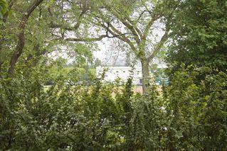 Photo 7: 7803 93 Street in Edmonton: Zone 17 House for sale : MLS®# E4202212