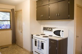 Photo 21: 7803 93 Street in Edmonton: Zone 17 House for sale : MLS®# E4202212