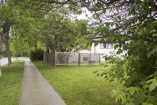 Photo 40: 7803 93 Street in Edmonton: Zone 17 House for sale : MLS®# E4202212
