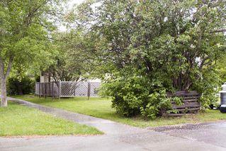 Photo 39: 7803 93 Street in Edmonton: Zone 17 House for sale : MLS®# E4202212