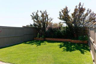Photo 34: 9061 SCOTT Crescent in Edmonton: Zone 14 House Half Duplex for sale : MLS®# E4208467