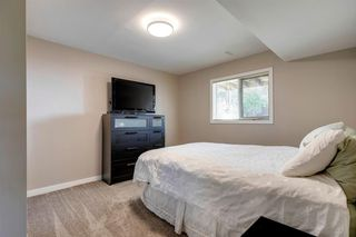 Photo 26: 75 Millbank Road SW in Calgary: Millrise Detached for sale : MLS®# A1037096