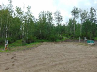 Photo 5: Lot 7 27331 Township Road 481: Rural Leduc County Rural Land/Vacant Lot for sale : MLS®# E4218164