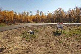 Photo 4: Lot 7 27331 Township Road 481: Rural Leduc County Rural Land/Vacant Lot for sale : MLS®# E4218164