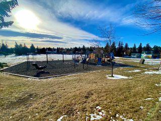 Photo 21: 1320 Lake Sylvan Drive SE in Calgary: Bonavista Downs Detached for sale : MLS®# A1045430