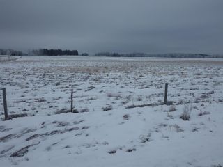 Photo 15: 50026 Highway 53 in Rural Ponoka County: NONE Agri-Business for sale : MLS®# A1054861