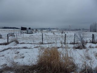 Photo 16: 50026 Highway 53 in Rural Ponoka County: NONE Agri-Business for sale : MLS®# A1054861