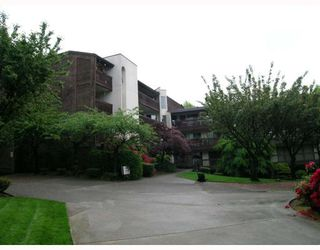 "Photo 9: 206 9867 MANCHESTER Drive in Burnaby: Cariboo Condo for sale in ""BARCLAY WOODS"" (Burnaby North)  : MLS®# V709769"
