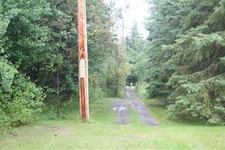 Photo 4: 21 464049 RR 14: Rural Wetaskiwin County House for sale : MLS®# E4172918