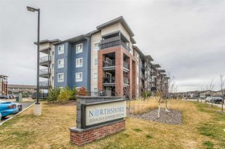 Photo 2: 418 5510 SCHONSEE Drive in Edmonton: Zone 28 Condo for sale : MLS®# E4196525