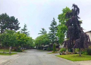 "Photo 25: 38 11291 7TH Avenue in Richmond: Steveston Village Townhouse for sale in ""MARINER'S VILLAGE"" : MLS®# R2469827"