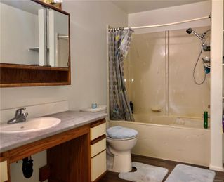 Photo 4: 266 Ivy Pl in : CV Comox (Town of) House for sale (Comox Valley)  : MLS®# 856443