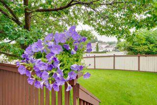 Photo 28: 2804 37 Street NW in Edmonton: Zone 29 House for sale : MLS®# E4166784