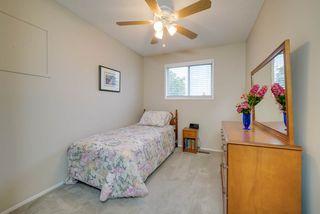 Photo 22: 2804 37 Street NW in Edmonton: Zone 29 House for sale : MLS®# E4166784