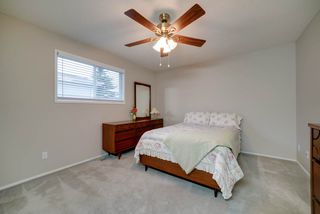 Photo 20: 2804 37 Street NW in Edmonton: Zone 29 House for sale : MLS®# E4166784
