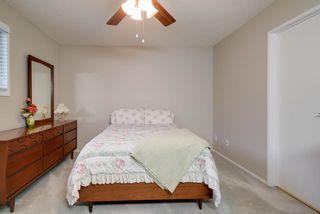 Photo 21: 2804 37 Street NW in Edmonton: Zone 29 House for sale : MLS®# E4166784