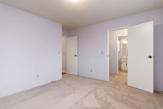 Photo 15: 11646 WARESLEY Street in Maple Ridge: Southwest Maple Ridge House for sale : MLS®# R2413522