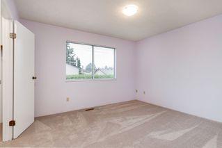 Photo 13: 11646 WARESLEY Street in Maple Ridge: Southwest Maple Ridge House for sale : MLS®# R2413522