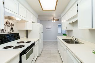 Photo 8: 11646 WARESLEY Street in Maple Ridge: Southwest Maple Ridge House for sale : MLS®# R2413522