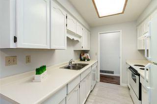 Photo 9: 11646 WARESLEY Street in Maple Ridge: Southwest Maple Ridge House for sale : MLS®# R2413522