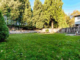 Photo 14: 2827 COMMONWEALTH Street in Port Coquitlam: Glenwood PQ House for sale : MLS®# R2417210