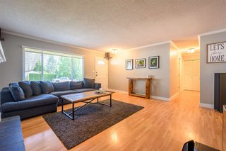 Photo 7: 3229 275A Street in Langley: Aldergrove Langley House for sale : MLS®# R2418832