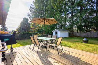 Photo 19: 3229 275A Street in Langley: Aldergrove Langley House for sale : MLS®# R2418832