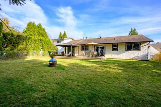 Photo 15: 3229 275A Street in Langley: Aldergrove Langley House for sale : MLS®# R2418832
