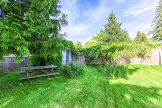"""Photo 20: 11481 95 Avenue in Delta: Annieville House for sale in """"ANNIEVILLE"""" (N. Delta)  : MLS®# R2461389"""