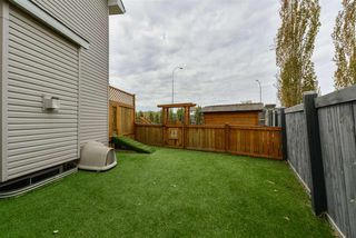 Photo 38: 3553 MCLAY Crescent in Edmonton: Zone 14 House for sale : MLS®# E4204307