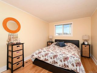 Photo 7: 3213 Doncaster Dr in Saanich: SE Cedar Hill House for sale (Saanich East)  : MLS®# 836322