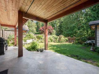 Photo 22: 1453 PARK Avenue: Roberts Creek House for sale (Sunshine Coast)  : MLS®# R2480704