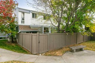 Photo 27: 824 ERIN Place in Edmonton: Zone 20 Townhouse for sale : MLS®# E4175830