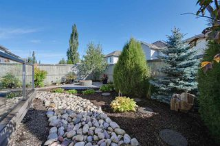 Photo 23: 1119 117A Street in Edmonton: Zone 55 House for sale : MLS®# E4177852