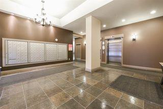 Photo 28: 202 10303 105 Street in Edmonton: Zone 12 Condo for sale : MLS®# E4178852