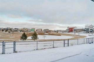 Photo 33: 1184 CY BECKER Road in Edmonton: Zone 03 House for sale : MLS®# E4181701