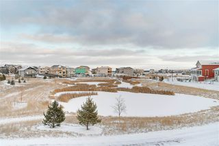 Photo 35: 1184 CY BECKER Road in Edmonton: Zone 03 House for sale : MLS®# E4181701