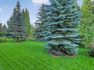 Photo 36: 219 Scenic Acres Drive NW in Calgary: Scenic Acres Detached for sale : MLS®# C4280317
