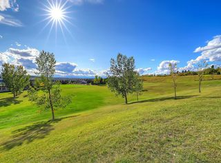 Photo 39: 219 Scenic Acres Drive NW in Calgary: Scenic Acres Detached for sale : MLS®# C4280317