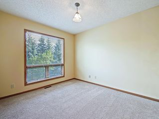 Photo 23: 219 Scenic Acres Drive NW in Calgary: Scenic Acres Detached for sale : MLS®# C4280317