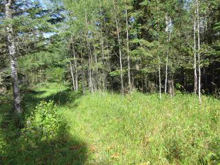 Photo 45: RR 205 Twp Rd 625: Rural Thorhild County House for sale : MLS®# E4212229